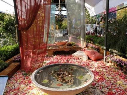 Ideas para decorar el jard n en invierno decorando el hogar for Decoracion de interiores jardines de invierno